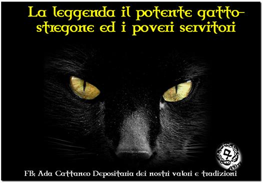 Il Potente Gatto Stregone Ed I Poveri Servitori